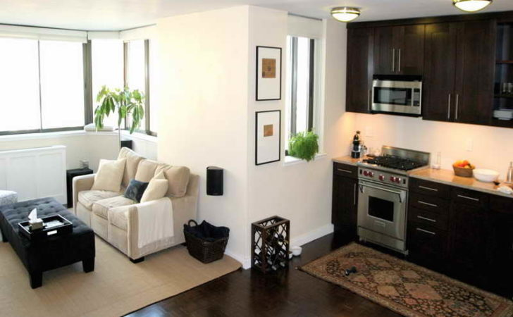 Apartment Decorating Ideas Small Cool