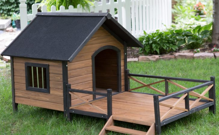 Boomer George Lodge Dog House Porch Large