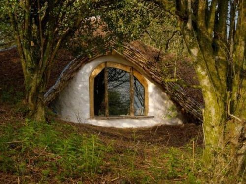 Build Forest Bungalow Less Thechive