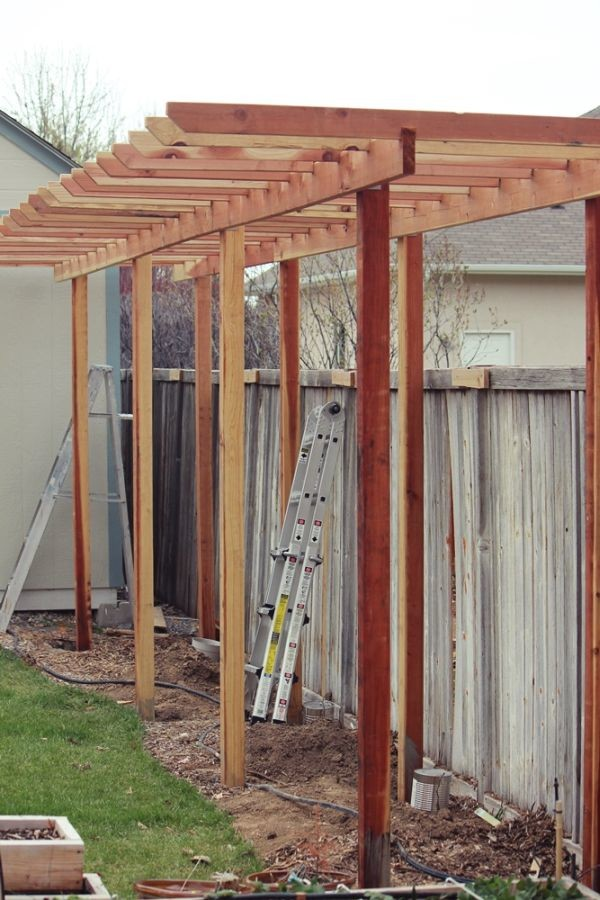 Build Grape Arbor Step