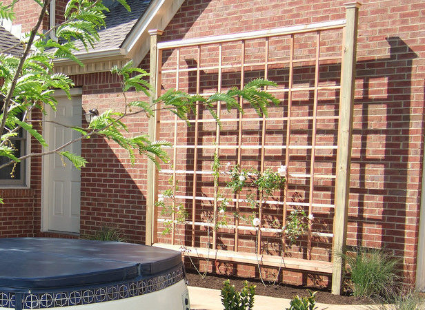 Build Sun Fighting Trellis Tos Diy