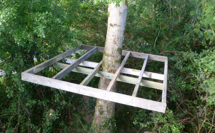 Build Treehouse Simple Way