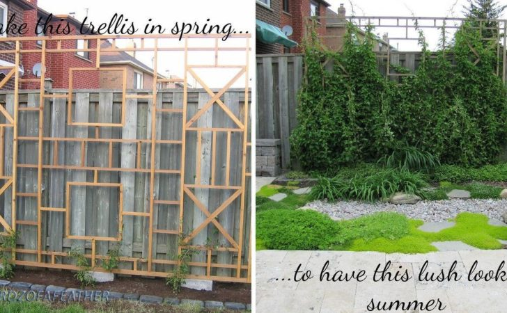 Build Trellis Privacy Screen Hometalk