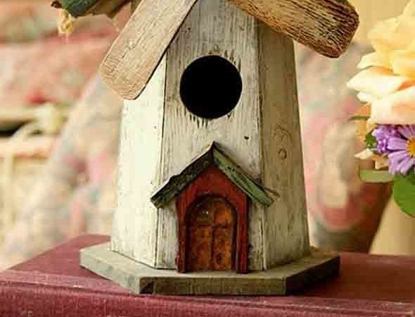 Build Wooden Birdhouses Fresh Unique Decorative