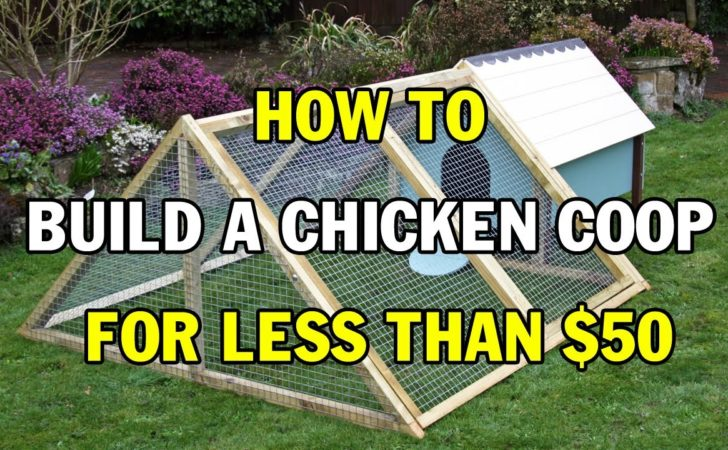 Building Chicken Coop Dummies