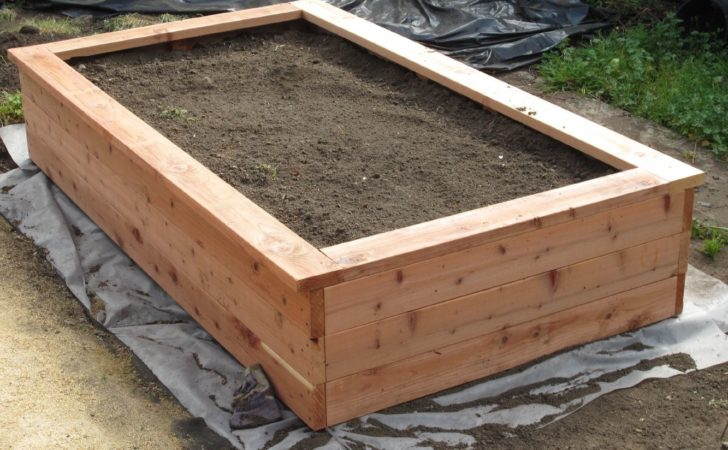 Building Planter Box Planting Fruits Veggies