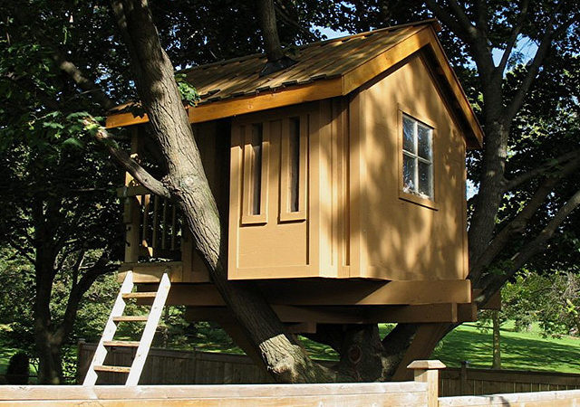 Builds Amazing Treehouse Less Than Photos