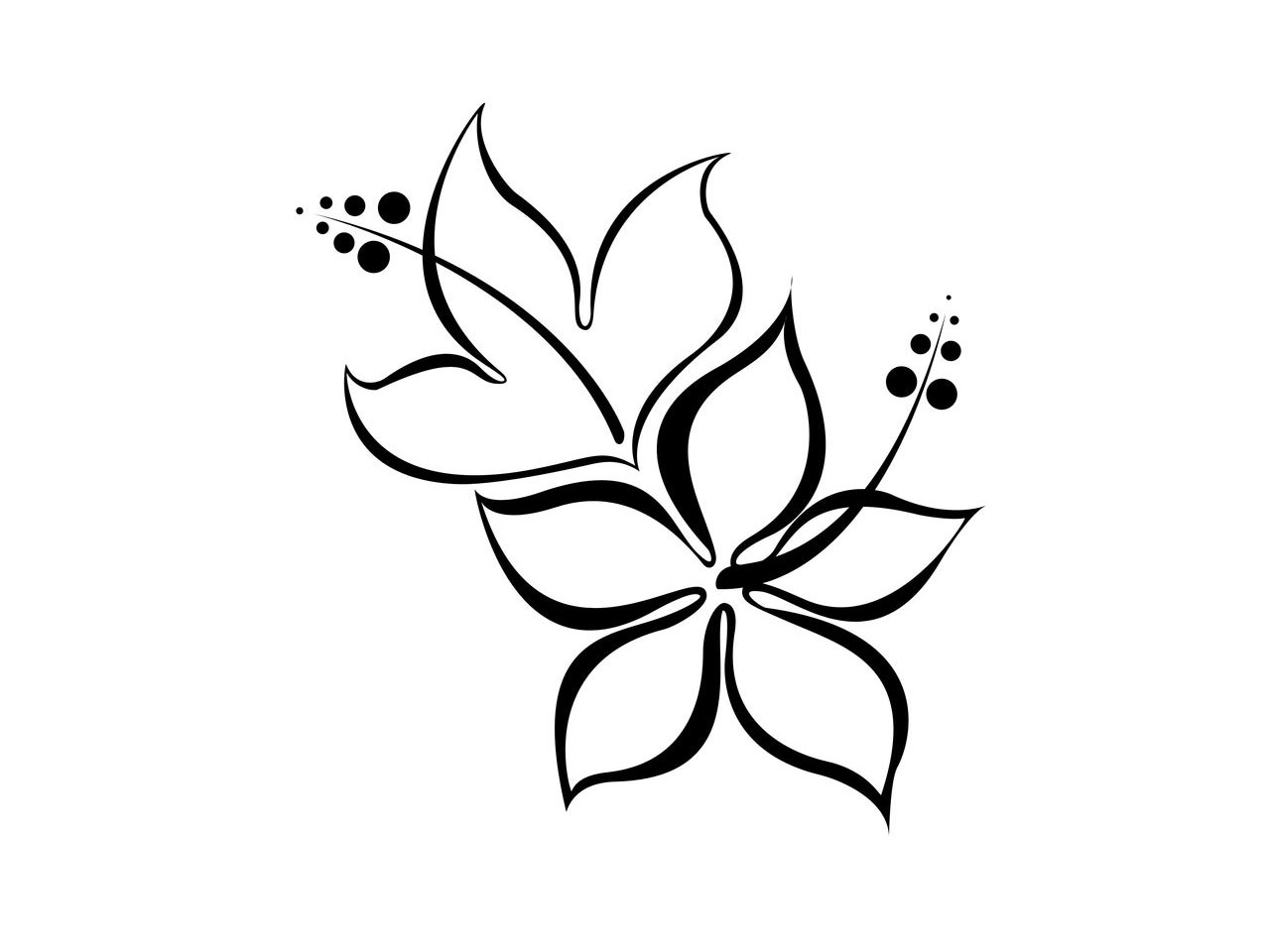 Cool Easy Drawing Flower Clipart Best