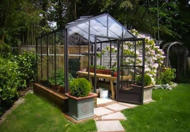 Diy Backyard Greenhouse Handsome Hassle Kits