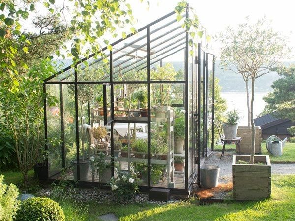 Eclectic Trends Micro Trend Greenhouses
