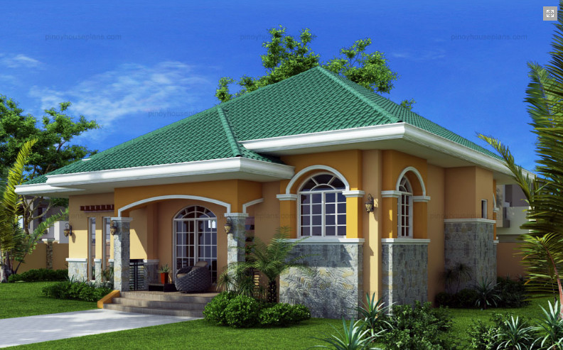 Elegant Elevated Bungalow House Plan Amazing