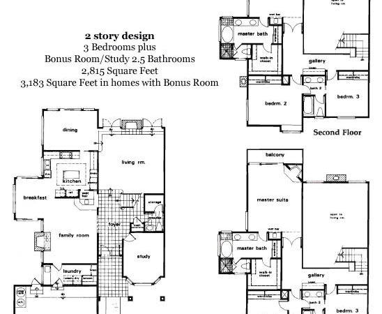 Estate Home Plans Floor