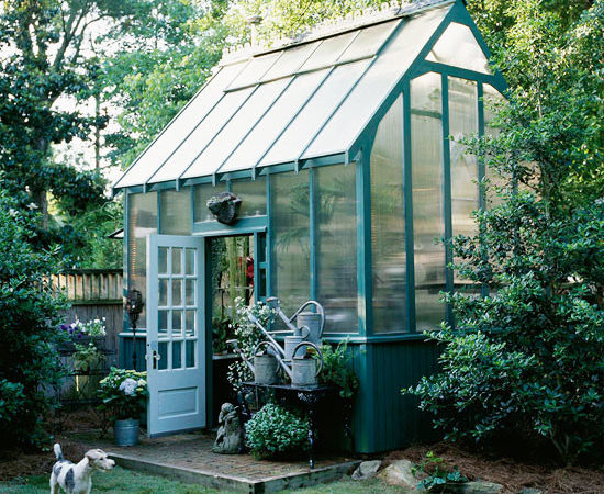 Garden House Dreaming Greenhouse Backyard