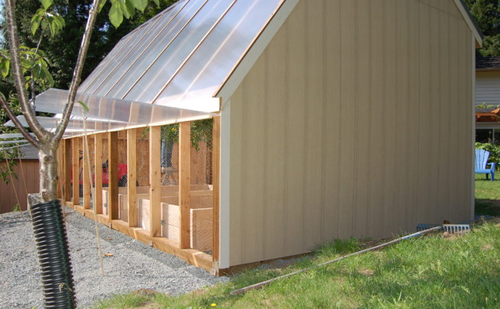 Greenhouse Under Polycarbonate Year Challenge