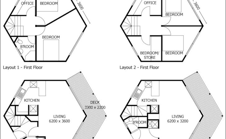 Hexagon House Designs Home Design Style