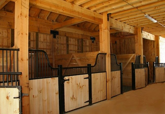 Horse Barn Plans Requirements Proper Shelter