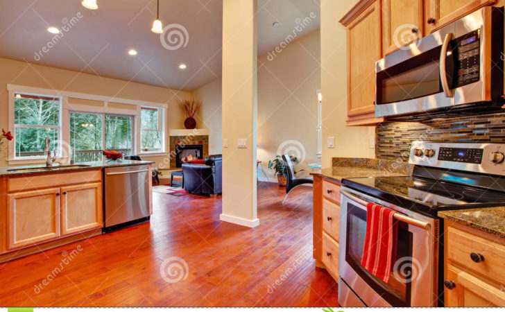 House Interior Open Floor Plan Kitchen Area