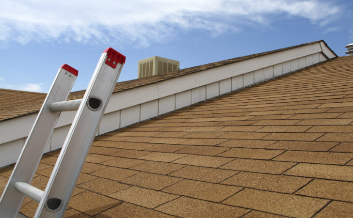 Maintain Healthy Roof Tips Tricks Themocracy