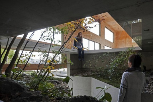 Nest House Woodland Green Home Japan Shelters Three