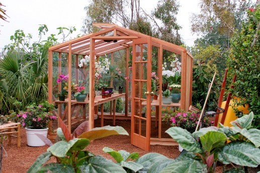 Once Decided Buy Backyard Greenhouse Part