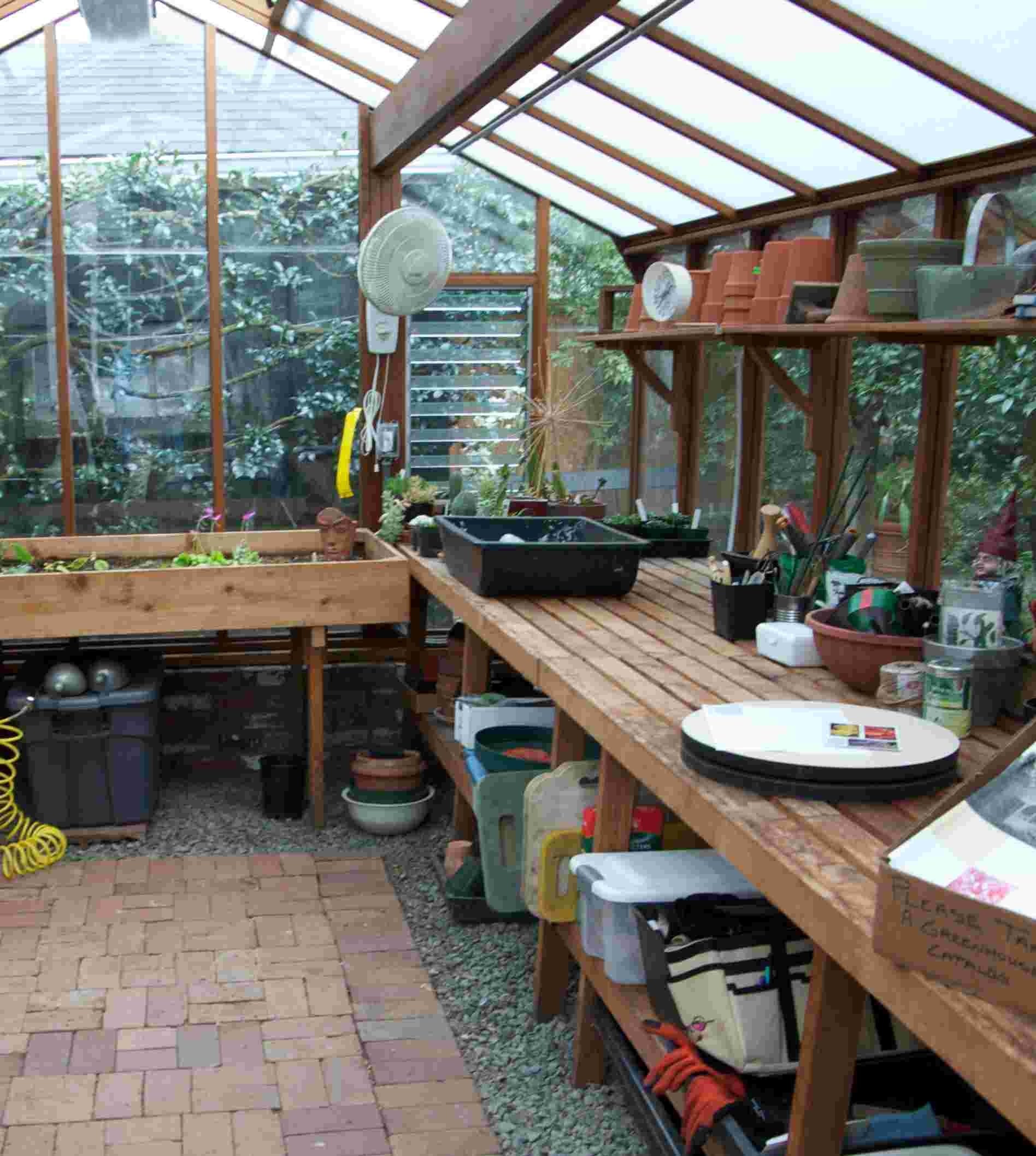 Once Decided Buy Backyard Greenhouse