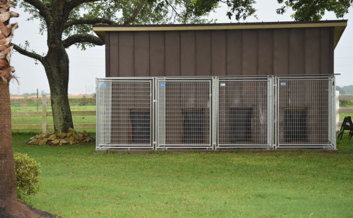 Our Indoor Dog Pen Doggie Box Giveaway