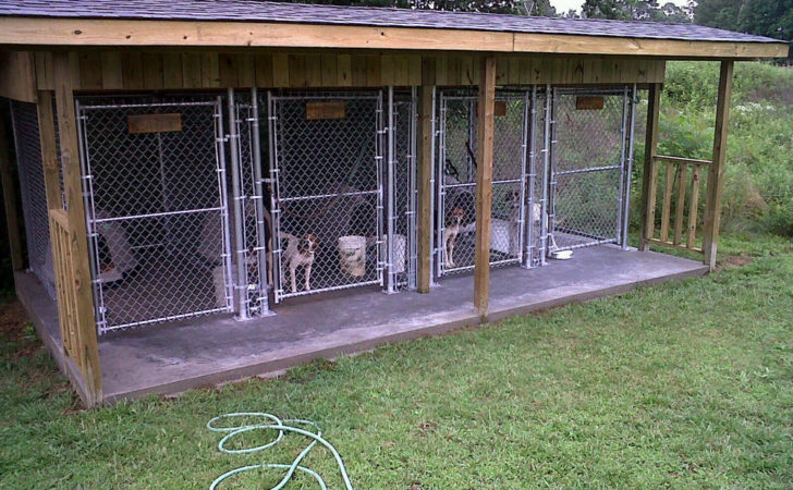 Outdoor Dog Kennel Ideas Search Results