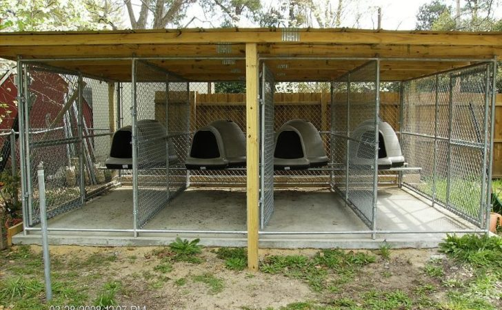Real Apbt Dog Kennel Setups Designs
