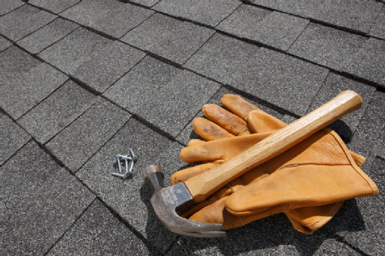 Roof Maintenance Tips Fall