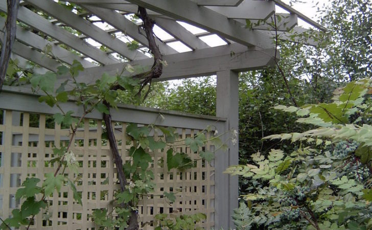 Specialty Gardening Cottage Garden Trellis Designs Wind