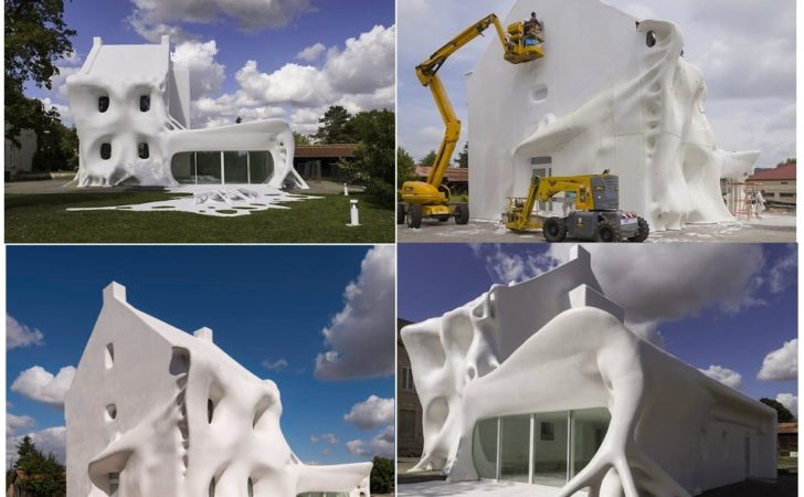 Top Houses Covered Something