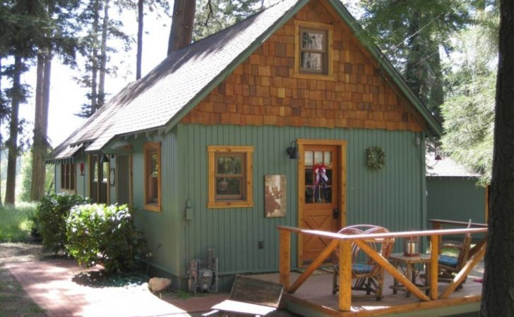 Wildflower Cabin Small House Bliss