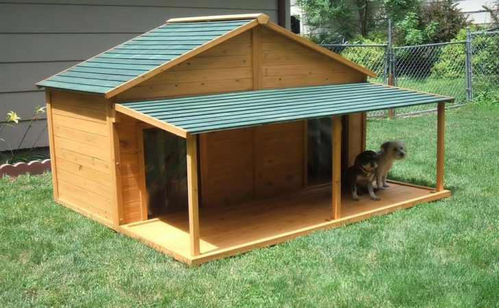 Your Big Friend Needs Large Dog House Mybktouch